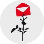 Rose Freitagspost