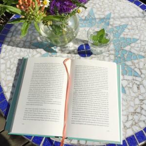 Buch im Sommer, Foto: Mandy Schoßig