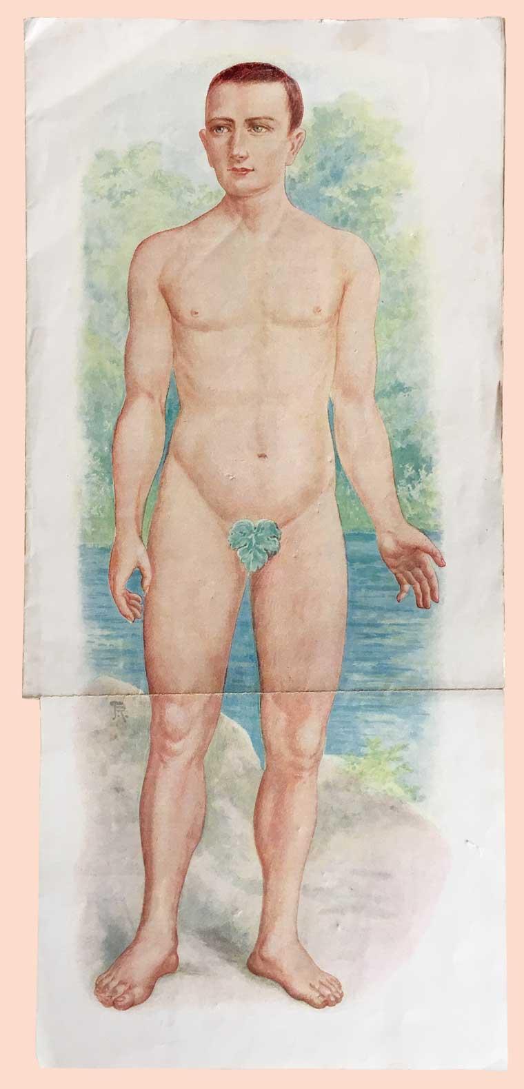Quelle: Jenny Springer, Die Ärztin im Hause. Dresdner Verlagshandlung M.O.Groh, ca. 1910